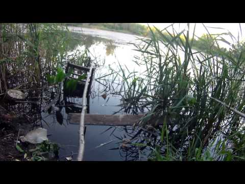 мастер класс рыбалка видео