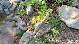 2021서울식물원 식물…