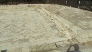 The Bird Mosaic of the 7th century villa in Caesarea. Israel