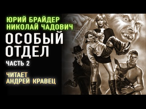 Аудиокнига.Ю.Брайдер, Н.Чадович 'Особый