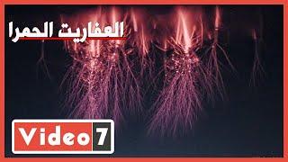 """""""العفاريت الحمرا"""" ظهرت.. 2020 ولسه المفاجآت مستمرة.. فيديو - اليوم السابع"""