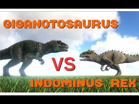 Giganotosaurus vs Indominus Rex (tamed+wild) || ARK: Survival Evolved || Cantex