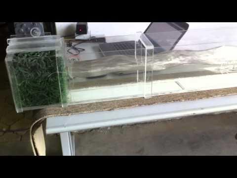 Wave Generator Flum Model using Arduino