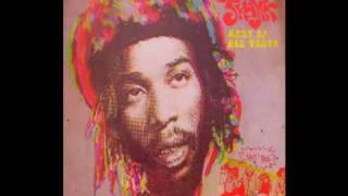 Big Youth- Pride & Joy Rock- Everyday Skank- Trojan 1980
