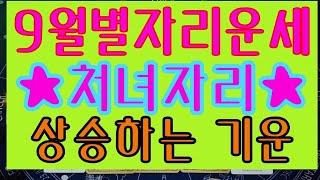 [9월별자리] 처녀자리 '상승하는 기운'