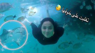 اول مرة زوجتي تسبح مع الاسماك 🐟(عضتها سمكة مفترسة😓)