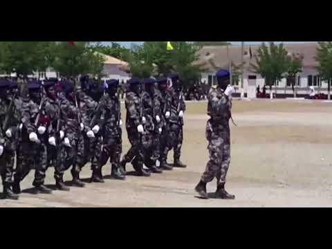 FORÇAS ARMADAS DE MOÇAMBIQUE