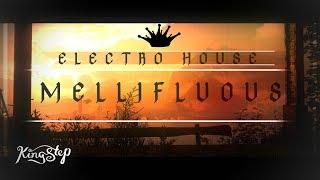 [Electro House] : Paul Garzon - Mellifluous [Free to use]