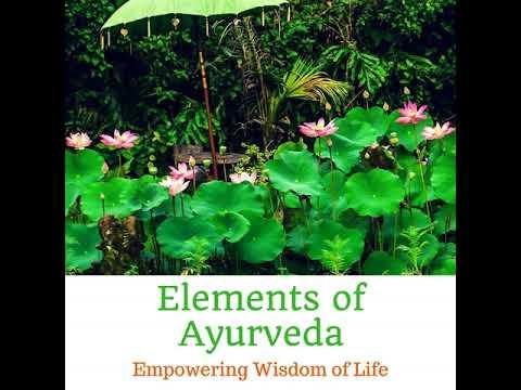 Episode 011 - Ayurveda Lifestyle Wisdom with Acharya Shunya