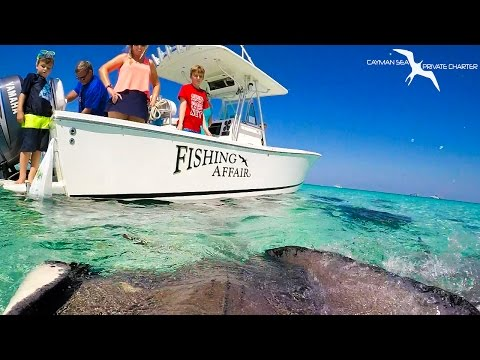 Stingray City Grand Cayman- a MUST DO adventure!!