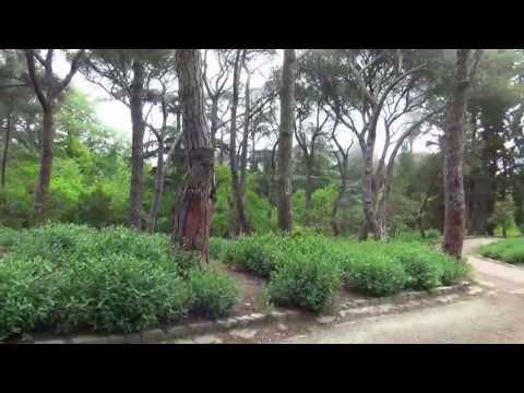 Массандровский парк, нижний, в Крыму, massandrovsky park, parks of the Crimea