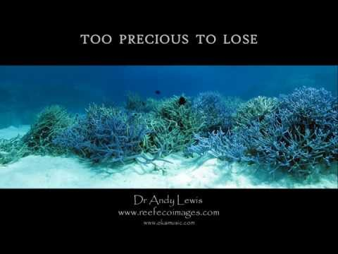 Coral Reefs: Too precious to Lose