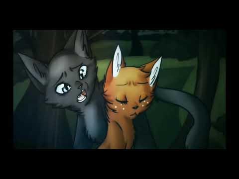 Коты-воители Белка и Уголёк клип