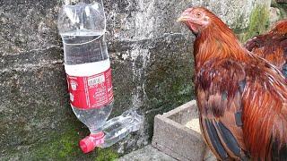 cách làm máng nước uống tự động cho gà từ chai nhựa bỏ đi [choidehoczzz]