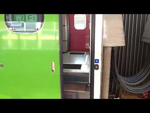Opening and closing the doors on a Finnish Class Sm3 Pendolino train