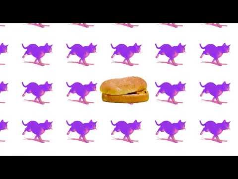 cachemonet - GIF Viral