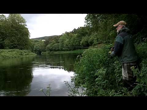 Salmon Fishing Ireland 2019 HD.