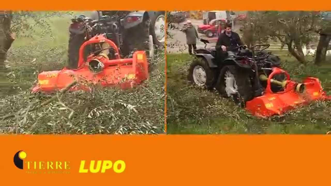 Lupo: Flail Mower for compact tractors