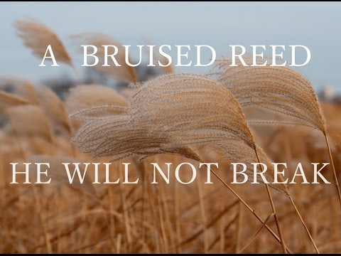 David Wilkerson - He Will Not Break A Bruised Reed | Full Sermon