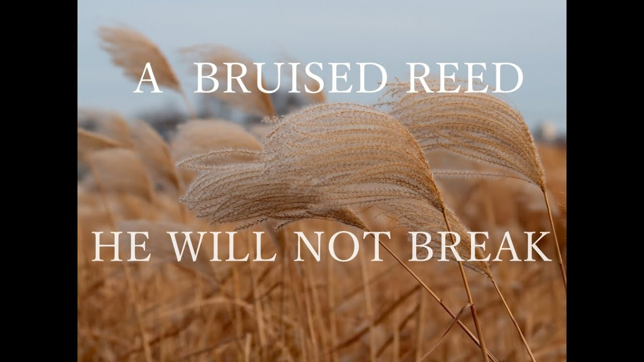 to break or not to break Synonyms for break at thesauruscom with free online thesaurus, antonyms, and definitions find descriptive alternatives for break.
