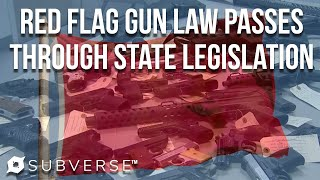 States Pass Red Flag Gun Laws | Subverse News
