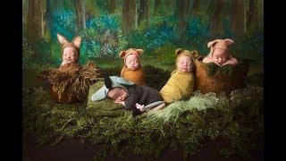 Disney Babies - Scott Quintuplets