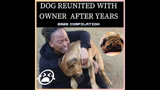 DOG REUNITED WITH OWNER AFTER YEARS COMPILATION 2020#CUTEPLANET  #DOGREUNITEDWITHOWNER