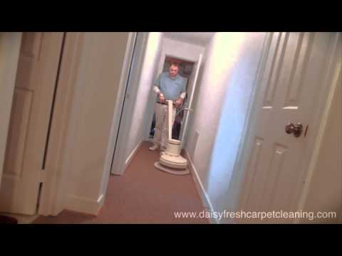 Daisy Fresh Carpet Cleaning Video - Metro Washington D.C.  Carpet, Upholstery, and Rug Cleaning