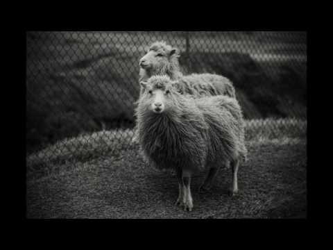 Faroe Islands April 2017