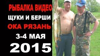 Рыбалка видео - щуки и берши 3,4 мая Ока 2015г