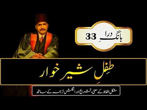 Tifal-e-Sheer Khawaar  || Young Baby ||...