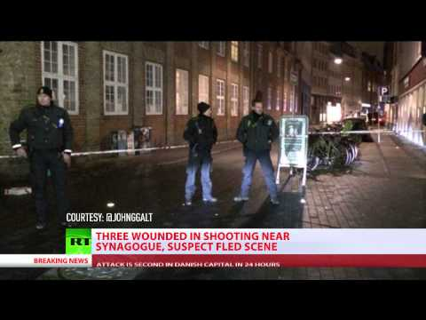 Copenhagen synagogue shooting: 1 shot in...