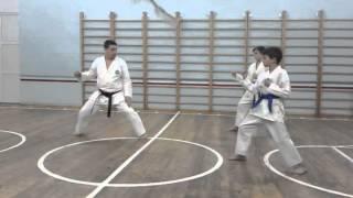 Каратэ, 4 кю(синий пояс) экзамен. Karate 4 kyu (blue belt) exam