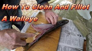 How To Clean And Fillet A Walleye Quickly and Easily… (Step By Step Instructions)