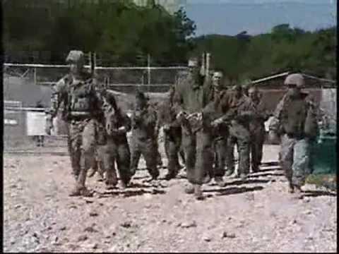 Amazon.com: US Army MOS 31B Military Police 11.75 Inch ...