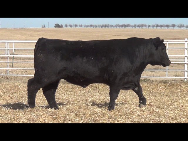 Express Ranches Lot 409