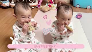 일란성쌍둥이의 일상 시트콤~ 붕어빵 먹방~