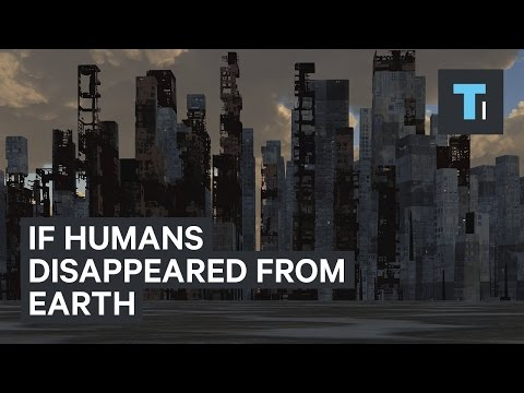 Download Youtube: If humans disappeared from Earth