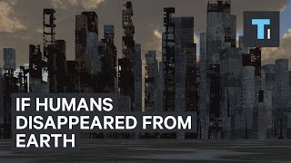 If humans disappeared from Earth