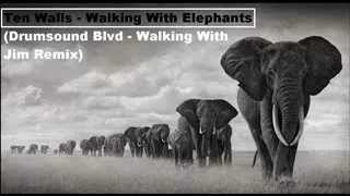 Ten Walls - Walking With Elephants (Drumsound Blvd.- (Walking With Jim Intro Remix)