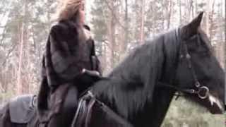 """Фото встреча конный клуб """"Восход"""". Лошади в лесу."""