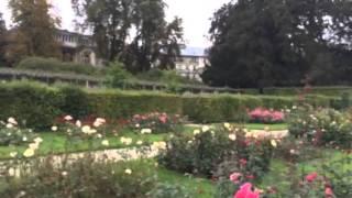 Rosengarten  im Herbst. Baden-Baden.