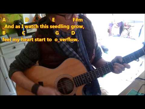 How To Play The Correct Chords Of My Fathers Eyes C Eric Clapton