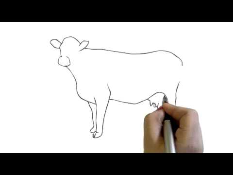 How To Draw A Cow Simple Easy Drawing Cartoon Youtube