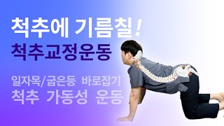 척추 교정운동! 일자목,거북목,굽은등,허리,골반 바로잡…