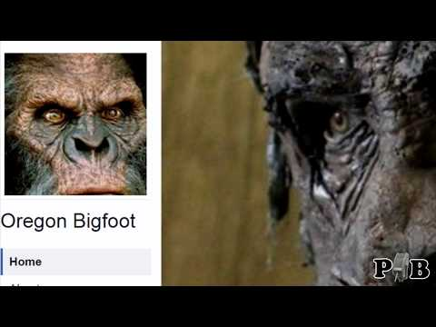 Latest Post Of A Bigfoot In Southern Oregon (commentary)