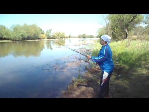 весенняя рыбалка воблы в астраханской области