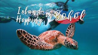 보홀 여행  호핑투어! 거북이와 나란히 수영하기?!? …