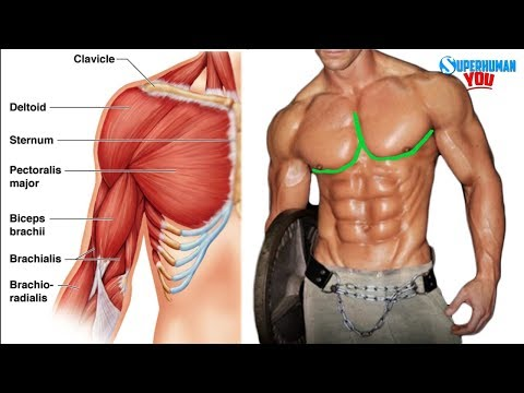 """How To Get The """"Outer Chest Line"""""""
