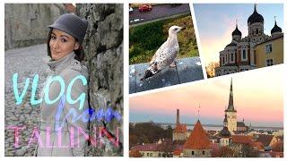 ВЛОГ ИЗ ТАЛЛИННА: Попали в Средневековье/ Самое интересное в Старом городе | VanilllaMaria(ОТКРОЙ МЕНЯ!♡ В этом ВЛОГе я беру вас с собой в небольшое путешествие в столицу Эстонии - Таллинн, погуляем..., 2015-12-16T09:00:00.000Z)